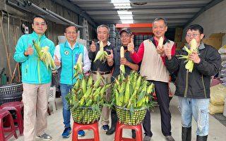 """竹市议员力推""""友善农业""""成功经验爱护地球"""