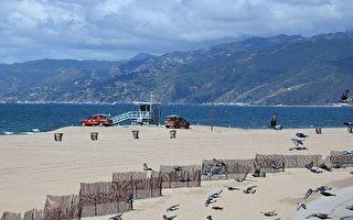 加州中共肺炎接近6千例 執意衝浪者被罰1000美元