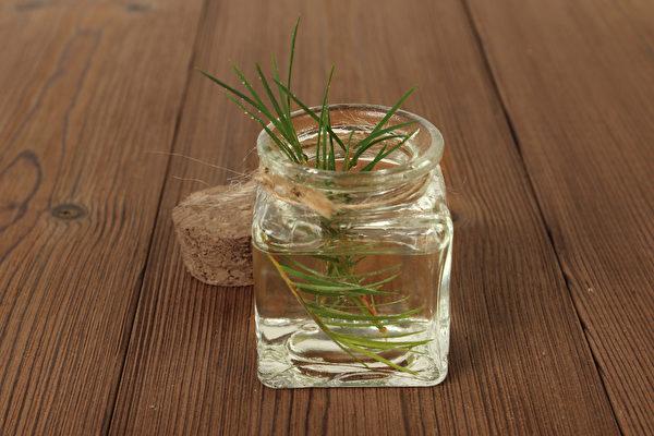 茶树精油有强大的抗病毒、抗霉菌和抗菌效果,适合添加在家庭清洁用品中。(Shutterstock)