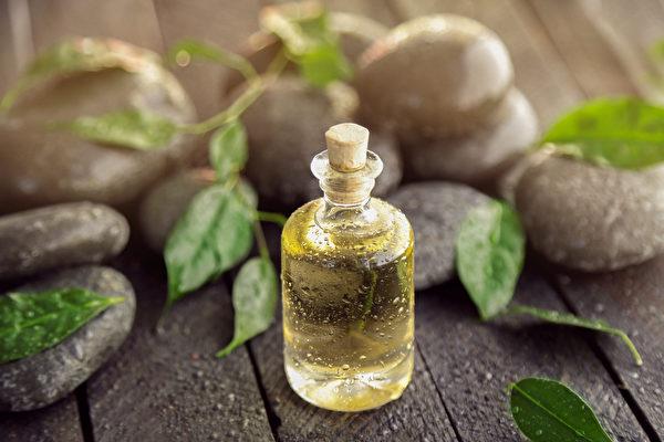 茶树精油有强大的抗病菌和抗发炎效果,而且使用上比较安全。(Shutterstock)