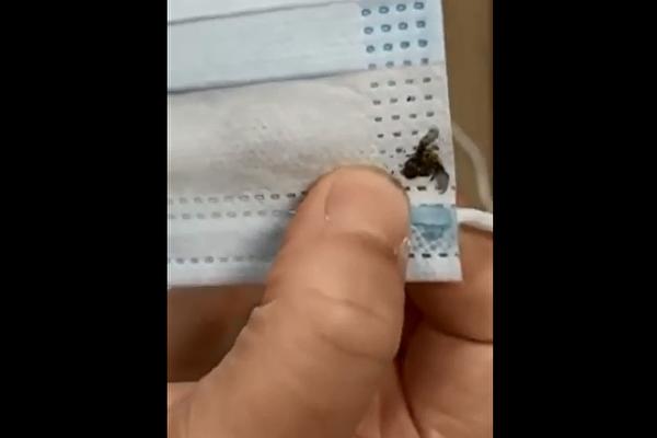 大陸現「蒼蠅口罩」成批劣質品已銷往海外