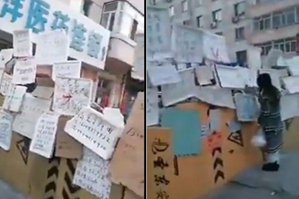 【现场视频】哈尔滨一区民众买菜等要电话预约