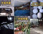 【现场视频】云南遭大冰雹袭击 房屋庄稼被毁