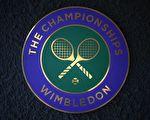 温网是四大满贯赛当中唯一的草地赛事