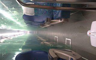 座位加装PVC隔帘 客运业推防疫专车