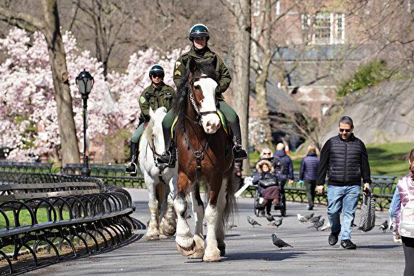 4月1日,骑警在中央公园巡逻。(Photo by Cindy Ord/Getty Images)