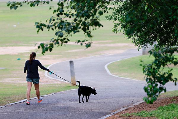 疫情中养宠物不仅有助社交互动、减轻焦虑,还能带来降血压等益处。(Kevin C. Cox/Getty Images)