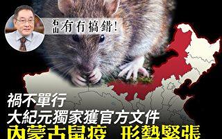 【有冇搞錯】禍不單行 內蒙古鼠疫形勢緊張