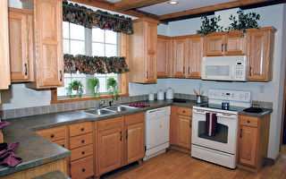 5种适合养在厨房的植物 不只净化空气 还吸油烟
