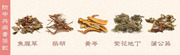 將魚腥草、柴胡、黃芩、紫花地丁與蒲公英各取三錢,煮水當茶飲,可以預防中共病毒。(Shutterstock/大紀元製圖)