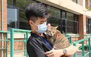 猫狗不会回传病毒 宠物防疫由饲主做起