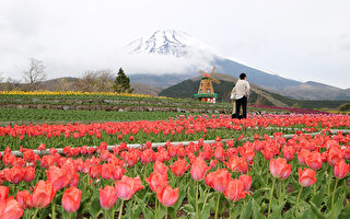 日本政府拼观光 砸百亿美元请你去玩