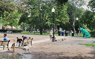 5月19日起 多伦多狗公园重开