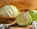 发酵高丽菜含乳酸菌和膳食纤维,能减少坏胆固醇,还活化免疫系统。(Shutterstock)