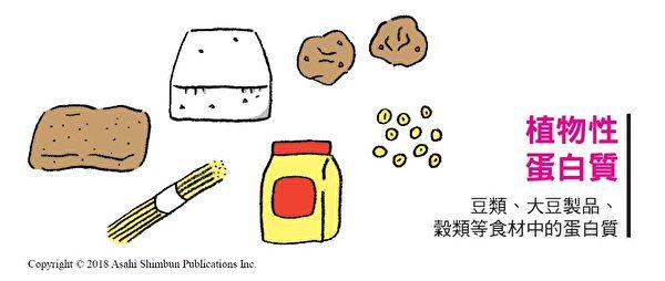 植物性蛋白質食材裡,最具代表性的是豆類及大豆製品。(三采文化提供)