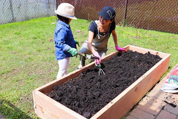 【美食天堂】在家打造小菜園 樂活栽種不是夢