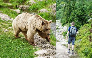 好险!男孩爬山被熊跟踪 幸好学过1招用来保命