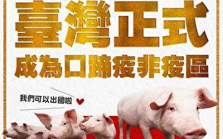 台灣改列口蹄疫非疫區 下半年生豬恢復出口