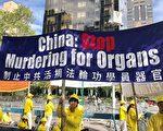 奥地利比利时发声  谴责中共活摘人体器官