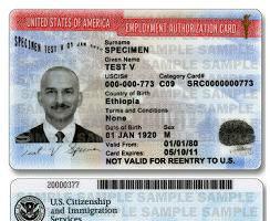 庇护申请核发工卡 美移民局:废除30天期限