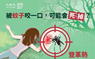 被蚊子咬一口可能会死掉?2招预防登革热