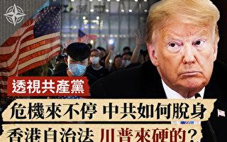 【十字路口】香港自治法出炉 川普下一步?