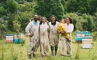 新西兰真正的毛利土着蜂蜜