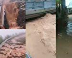 洪水还将重庆万州城区道路淹没,多地乡镇农贸市场亦被淹。(视频截图合成)