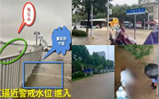 【視頻】武漢降雨量破紀錄 長江水逼近市區