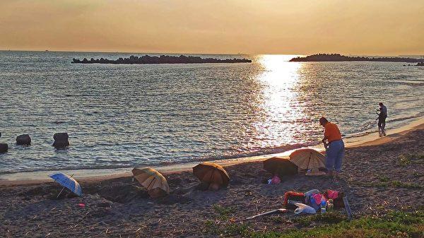 罕见雪花水母现身 台湾水母湖假日游客多