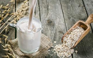 一种燕麦奶 多种料理 现代人的健康新选择