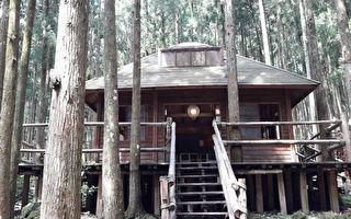 暢遊森林步道 探索新竹馬武督