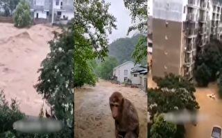 7月9日凌晨起,福建南平武夷山市多地遭遇大到暴雨,洪水泛滥。(视频截图合成)