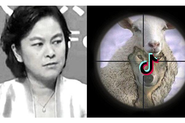 李正寬:抖音「羊皮落地」 深藏祕密遭圍剿