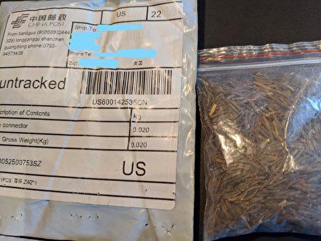 """纽约州多名居民近期收到不明种子包裹,包装袋上写着是""""中国邮政""""从中国寄来的,物品名用中文写着是""""项链""""等珠宝,但里面装着种子。"""