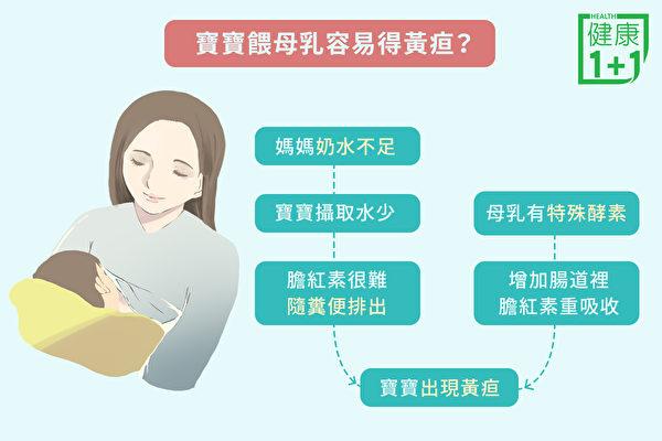 餵養母乳的寶寶,得黃疸的機率比較高。(健康1+1/大紀元)