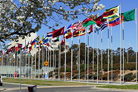 石铭:国际社会再次聚焦法轮功 呼吁停止迫害