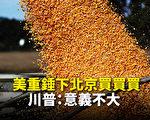 美农业部:中共不会完成所承诺农产品采购目标