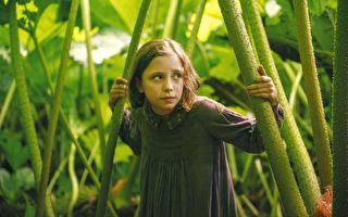 《秘密花园》影评:美丽的花园 也能助人走出伤痛