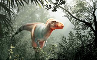 """英格兰现新恐龙物种 或为霸王龙""""近亲"""""""