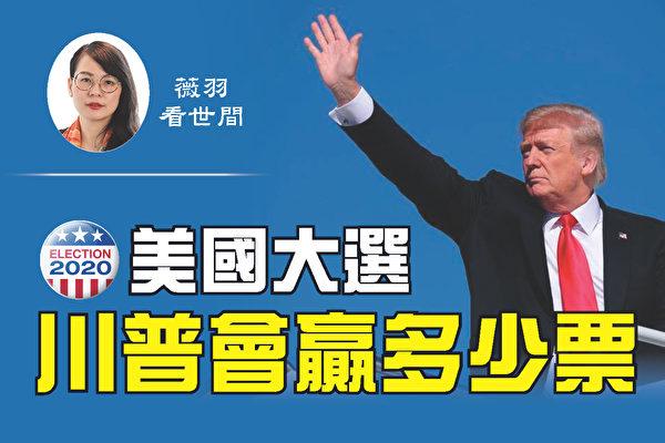 【薇羽看世间】2020美国大选 川普会赢多少票