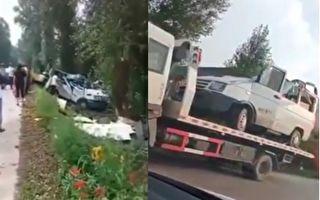 8月10日,黑龙江五常市一超载小型客车发生事故,导致9死6伤。(视频截图合成)