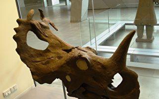 重大發現:恐龍化石中首次診斷出惡性腫瘤