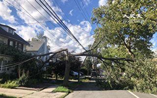 热带风暴袭击纽约 吹到2千棵树  87万户断电