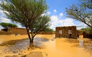 组图:苏丹洪灾 影响超过五万人