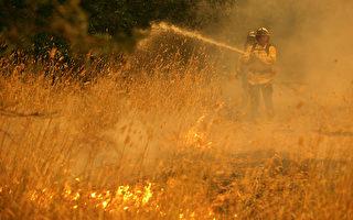 加州野火引發系列政策性改革  因疫情推延