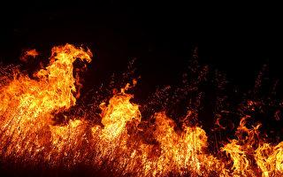 加州野火延燃酿5死 过火面积达罗德岛大小