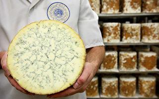 藍紋乳酪惹禍 英日貿易談判遇障礙