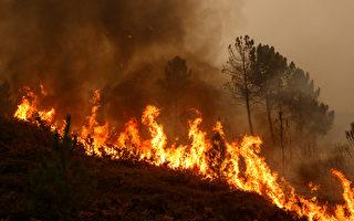 美国男子用脚踩踏两小时 试图扑灭野火