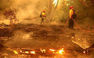 雷电引发大火损失严重    加州或面临更严峻山火危险